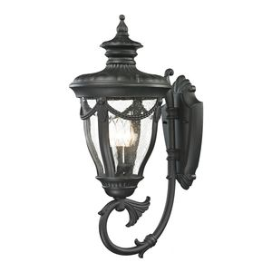 Anise Collection 1 Light Outdoor Sconce In Textured Matte Black by Elk Lighting