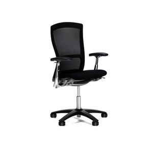 Life Chair Fully Adjustable Model by Knoll 3303