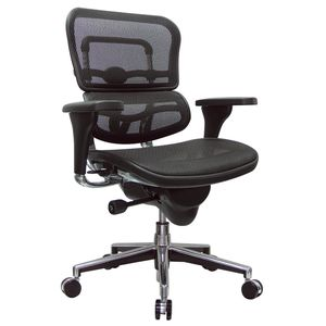 Ergohuman Mesh Mid Back Office Chair By Eurotech Seating